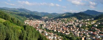 Hotels in Smolyan Province