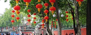 Hotels in Foshan Area