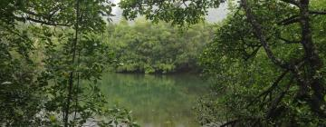 Hotels in Daintree Rainforest