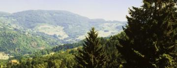 Self Catering Accommodation in Vosges
