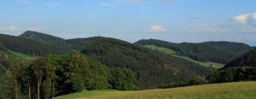 Отели в регионе Базель-Ланд