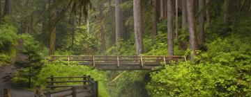 Hotels in Olympic National Park