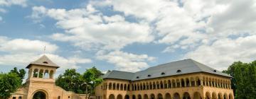 Hotels in Ilfov