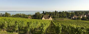 Hôtels dans cette région: Lac de Neuchâtel