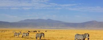 Hotels in Ngorongoro