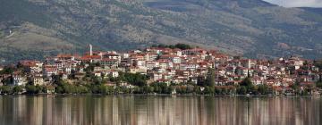 Hotels in Kastoria Prefecture