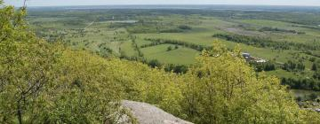 Hotels in Ottawa and Countryside