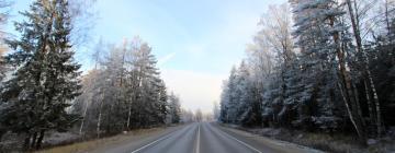 Отели в регионе Минское шоссе