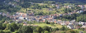 Hôtels dans cette région: Département de la Moselle