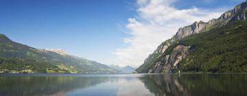 Hotels in Lake Walen