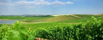 Hoteles en Ruta de los vinos del Alentejo