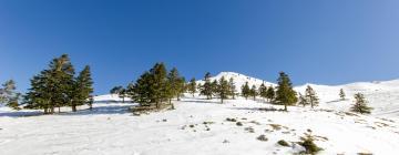Отели в регионе Parnassos Ski