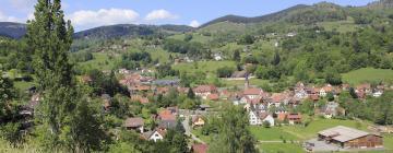 Hótel á svæðinu Vosges du Nord