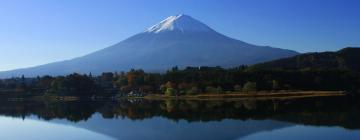 Holiday Homes in Mount Fuji