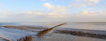 Family Hotels in West Frisian Islands