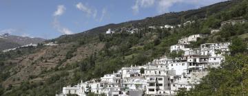 Casas y chalets en La Alpujarra