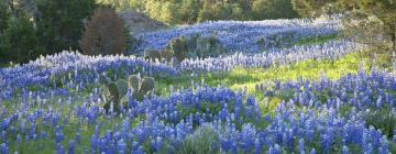 Hotels in Texas Hill Country