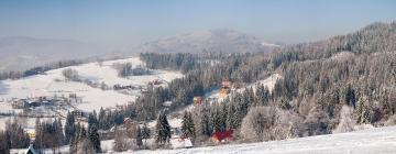 Hotele w regionie Beskid Śląski