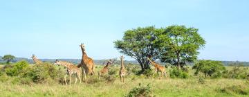 Lodges in Nairobi National Park