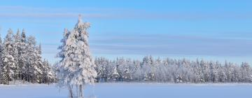 Hotels in Northern Savonia