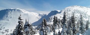 Hotels in Big White Ski