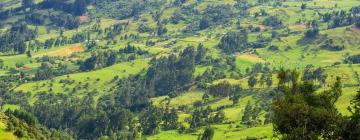 Hotels in Cundinamarca