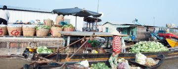 Hotels in Mekong Delta