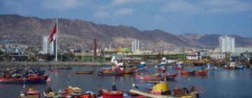 Apartments in Antofagasta Region