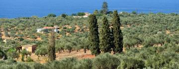Отели в регионе Messinia