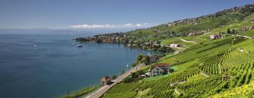 Hôtels dans cette région: Canton de Vaud