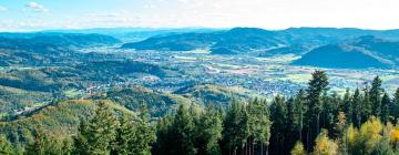Vacation Homes in Black Forest