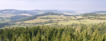 Отели в регионе Южная Богемия