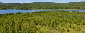 Hotels in Lapland