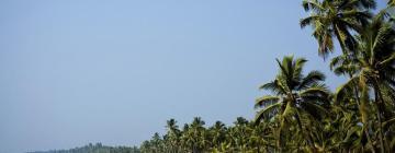 Luxury Hotels in Kerala