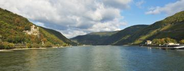 Hotels in Upper Middle Rhine Valley