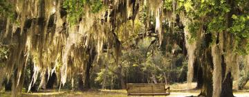 Hotels in Lowcountry