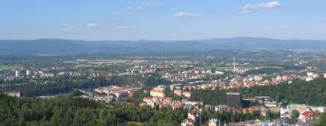 Regione di Karlovy Vary: hotel