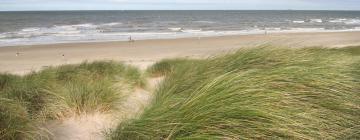 Budget hotels in Dutch Coast