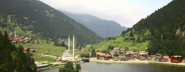 فنادق في منطقة البحر الأسود التركية