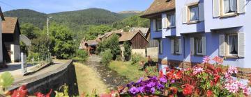 Hotels in Haut-Rhin