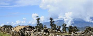 Hoteles en Uttarakhand