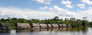 Hotels in Amazonas