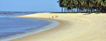 Pet-Friendly Hotels in Alagoas
