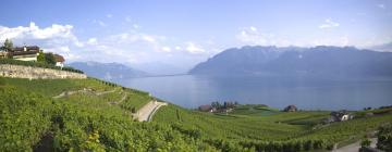 Отели в регионе Женевское озеро