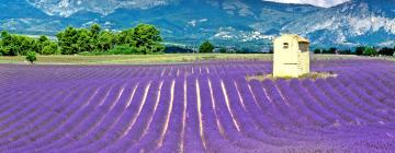 Hôtels dans cette région: Provence