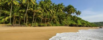 Luxury Tents in South Goa