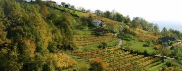 Hotels in Dolenjska (Lower Carniola)