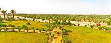 Hotéis em: Al Qassim Province