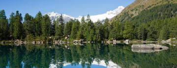 Hotels in Engadin