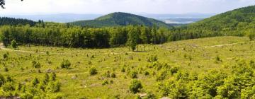 Hótel á svæðinu Thuringian Forest